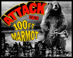 100ft marmot